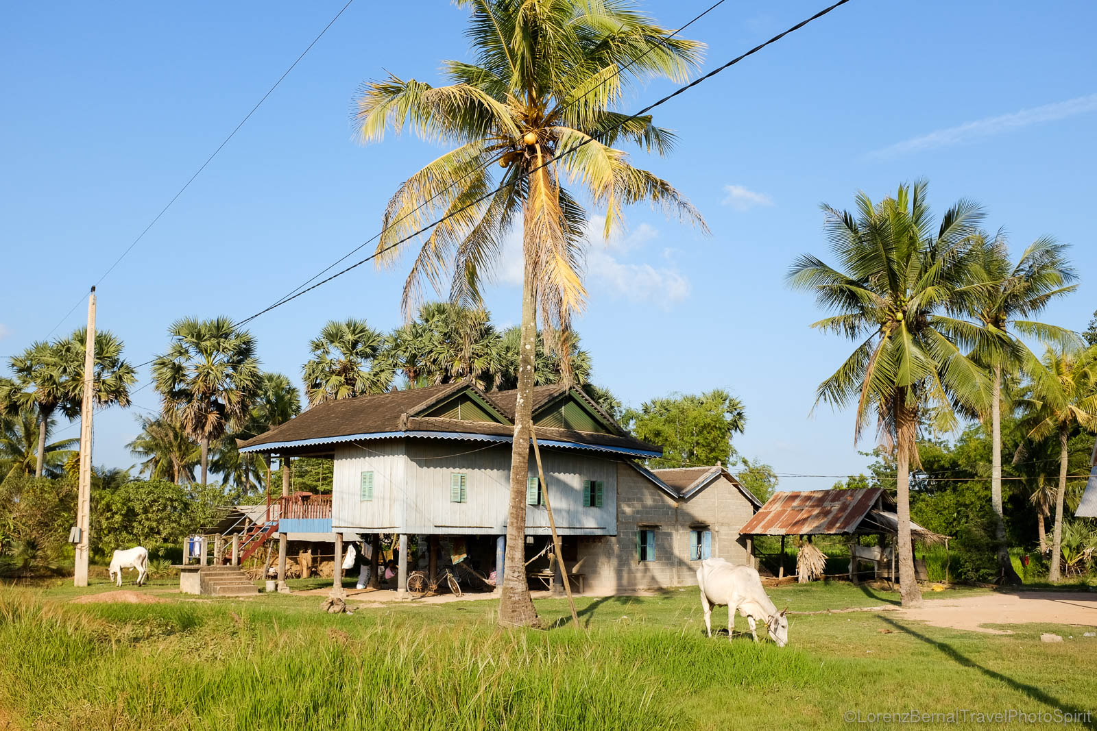 Tradional wooden khmer house on stilt in Kampot countryside, Cambodia