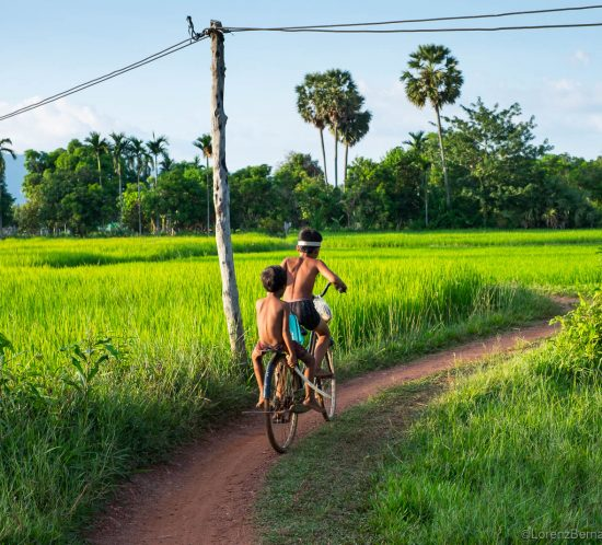 Cambodian children on bicycle in the rice fields, Kampot - A Lorenz Berna Travel Photography of Cambodia