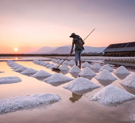Collecting the salt in kampot salt fields, Cambodia