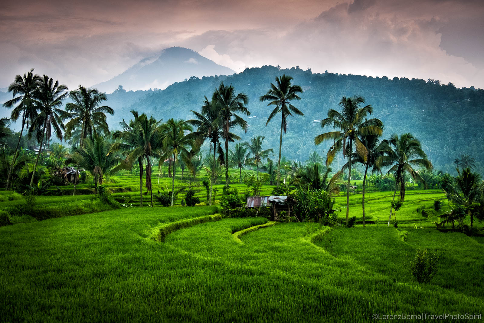 Gunung Agung volcano, from the rice terraces in Munduk - Indonesia Travel Photography by Lorenz Berna
