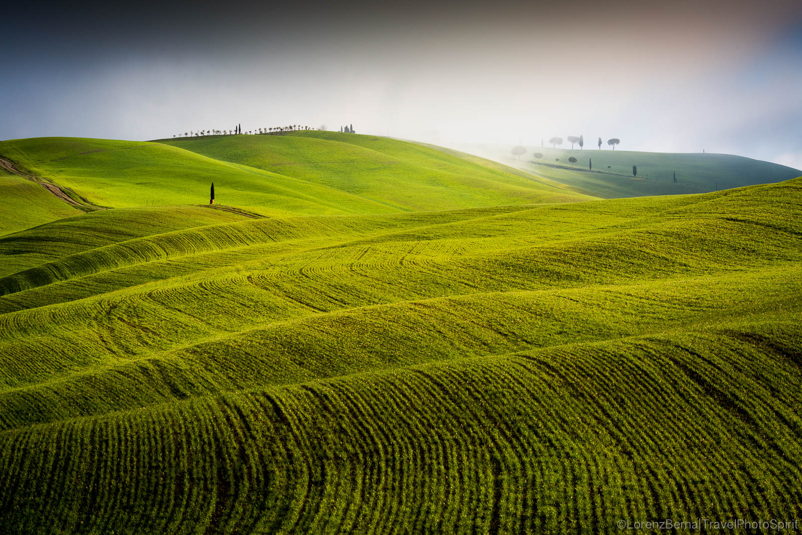 Waving valleys of the Val D'Orcia, Tuscany, Italy