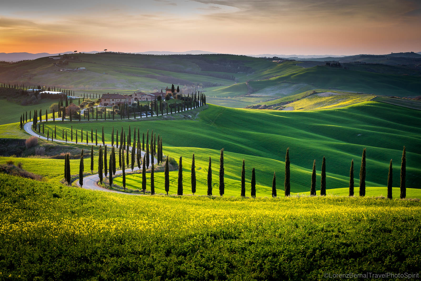 A distinctive driveway of Tuscany, bordered with Cypresses - A Lorenz Berna Photography of Italy.