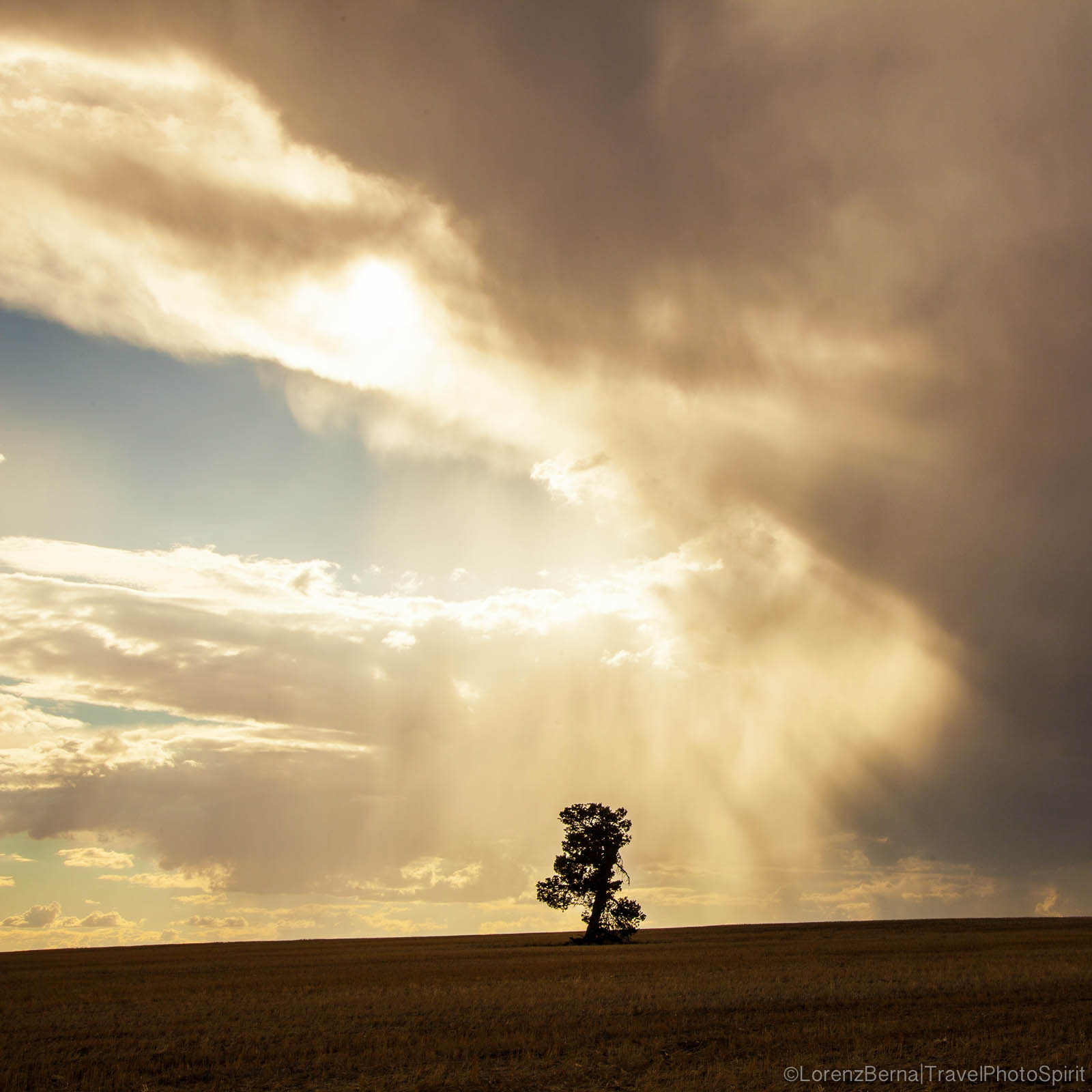 Australian sky above a lonely tree - A Lorenz Berna