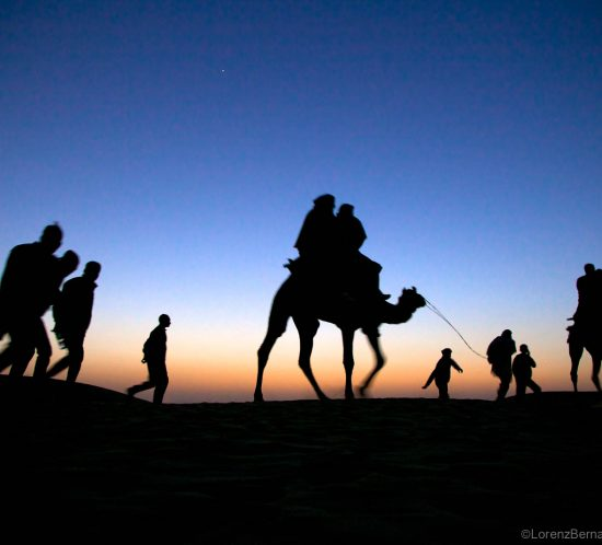 People and camels in the Thar Desert, walking home after the Desert festival of Jaisalmer, Rajasthan - A Lorenz Berna Photography of India