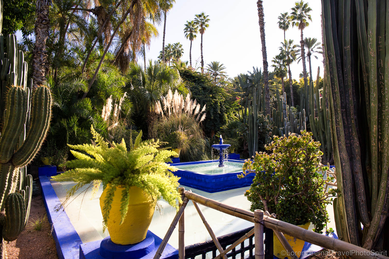 Around the fountain of the Majorelle gardens in Marrakech.