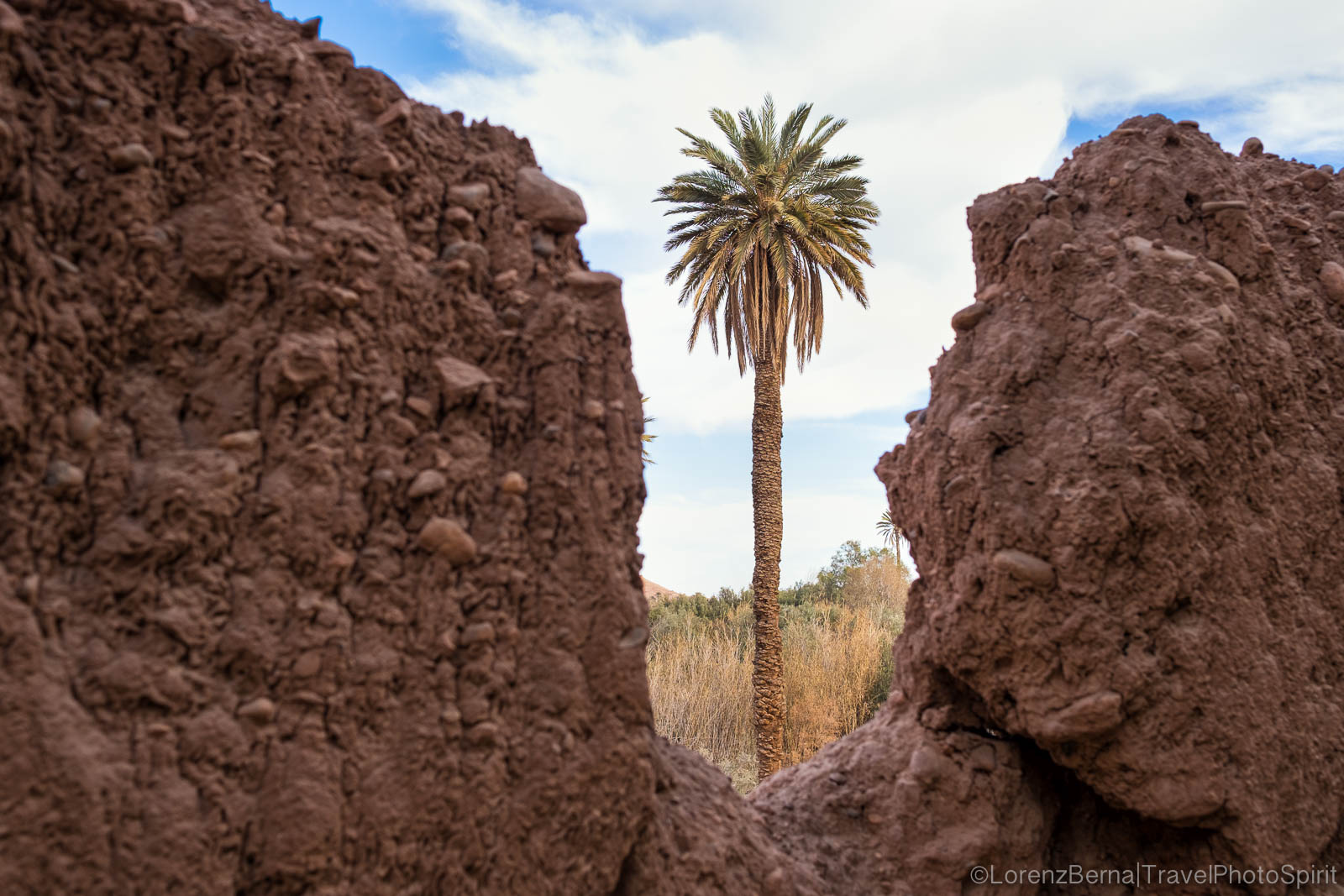 Palm tree in between two walls of clay and straw in Skoura, Morocco