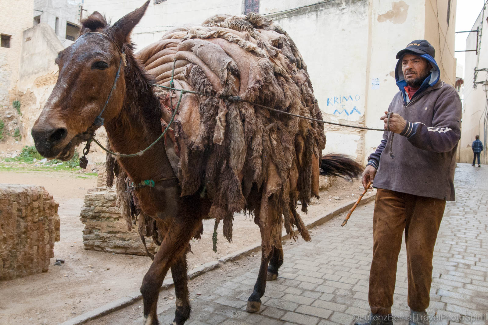 Skins from Fez tanneries, carried away on a horse back, Morocco