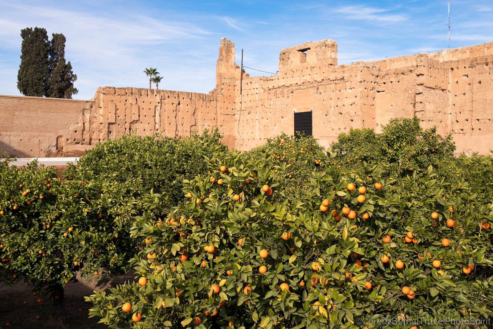 Orange grove in the El Badi palace in Marrakech