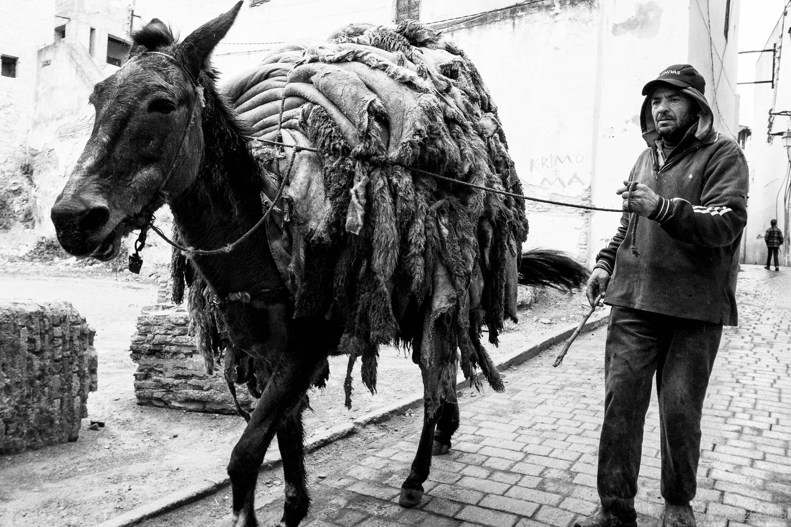 Black and white photography of Morocco : Skins from the Fez tanneries, carried away on a horse back, Morocco Street Photography