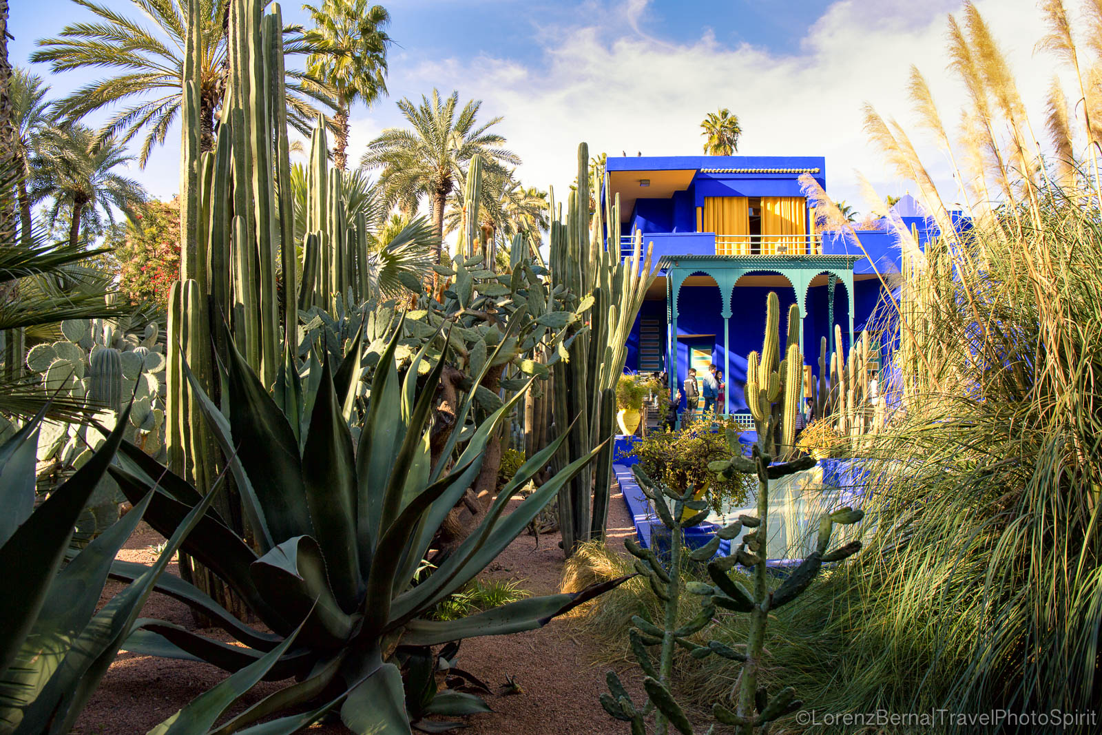 The Majorelle Gardens and the blue-painted Berber museum, Marrakech, Morocco