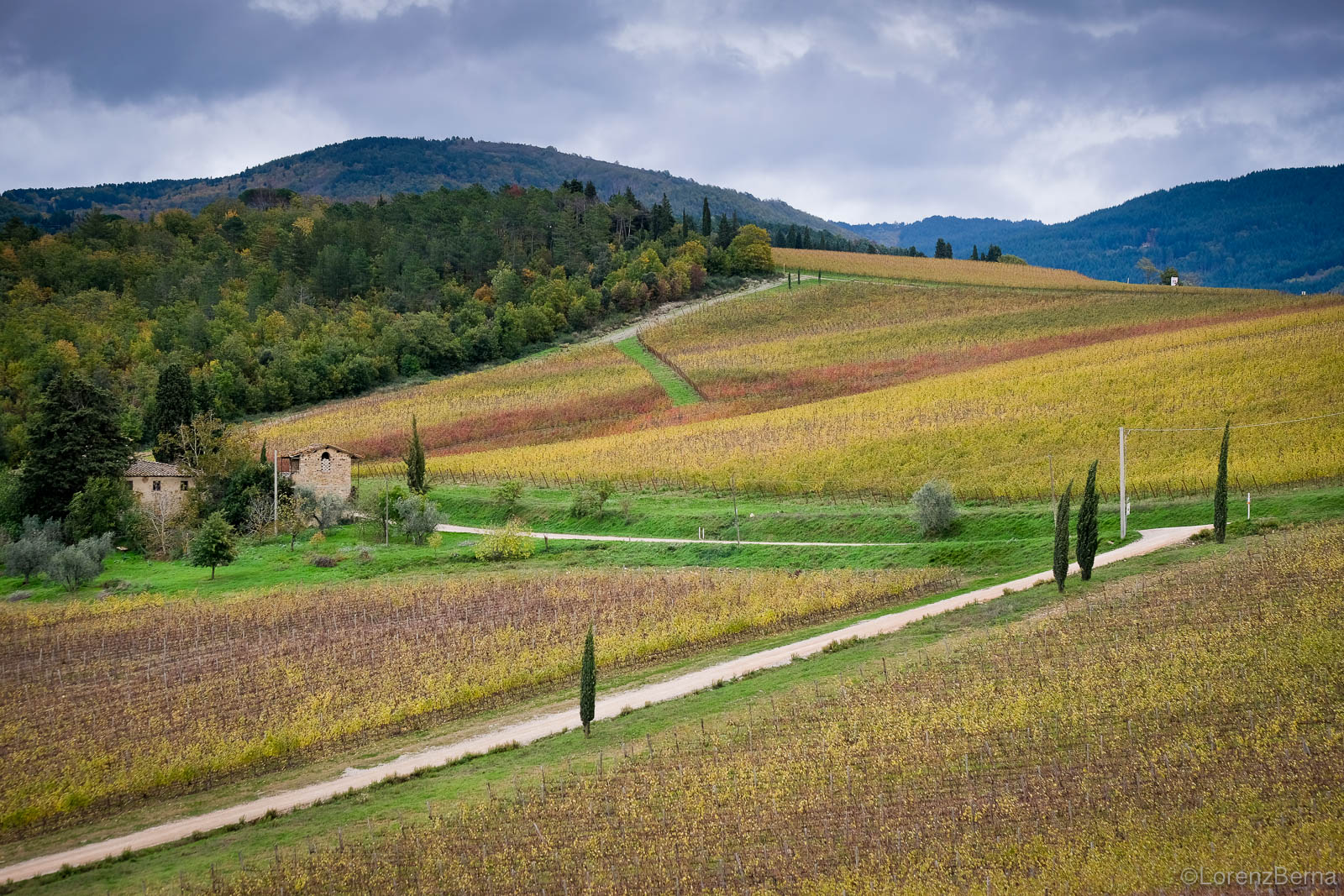 Geometrical game on an autumnal colourful field in Chianti, Tuscany, Italy